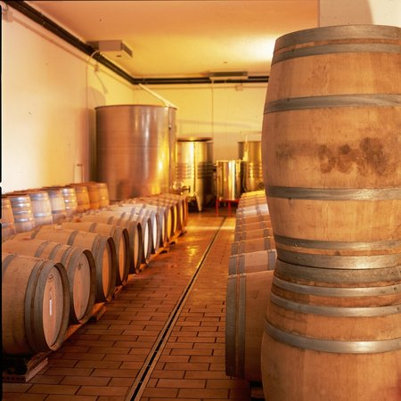 Baracchi Winery