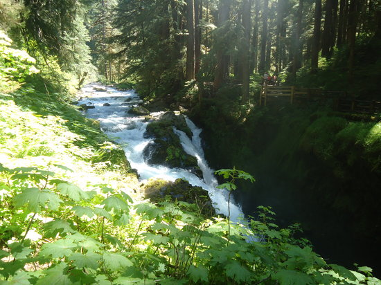 Sol Duc Falls: Beginning view of the the falls