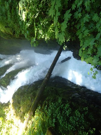 Sol Duc Falls: So powerful