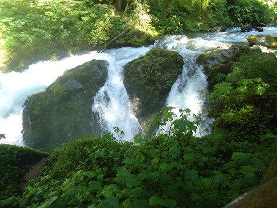 Sol Duc Falls: It really roars