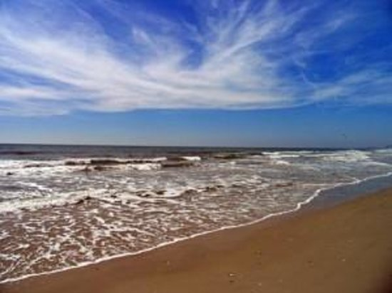 Comfort Suites Near Texas A&M - Corpus Christi: North Padre Island Beach