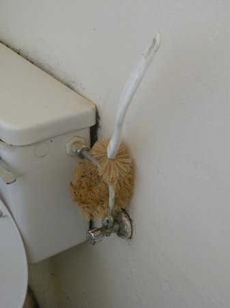 Brandkaros Holiday Resort: Storage for the dirty toilet brush...unbelievable