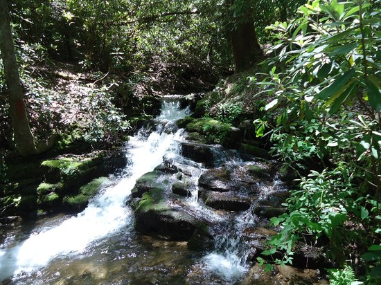 Enota Mountain Retreat : Beautiful waterfall right next to the camp sight