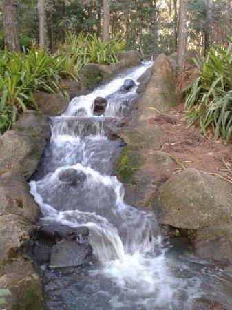 Alambique & Parque Ecologico Vale Verde: Tem cachoeira