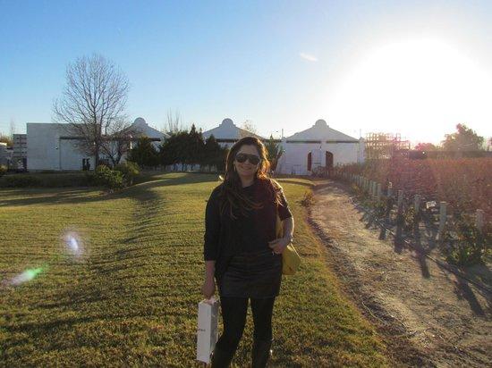 Bodega Luigi Bosca Familia Arizu: a construção  colonial contrasta com o céu sempre azul