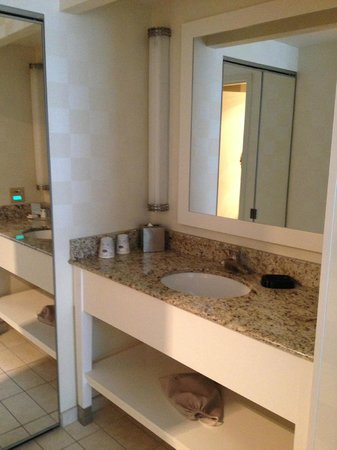 Hampton Inn & Suites Chicago - Downtown: Vanity