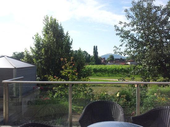 Kolping Campus Krems: Frühstücksterrasse