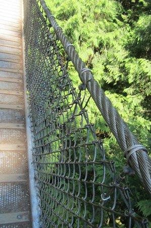 Lynn Canyon Park: pont suspendu