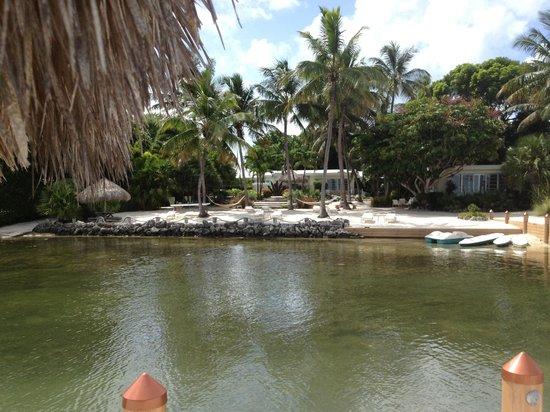 Kona Kai Resort, Gallery & Botanic Garden: View from dock looking back