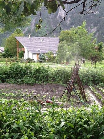 Le Petit Catalan: the garden!