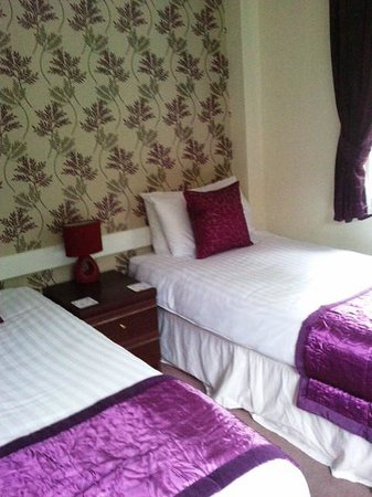 Rosecraddoc Manor: Downstairs Twin Bedroom