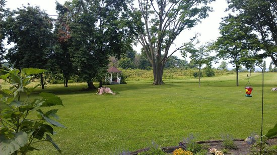 Stonehill Bed & Breakfast: More of the front lawn