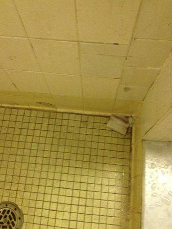 Wompatuck State Park: Shower floor