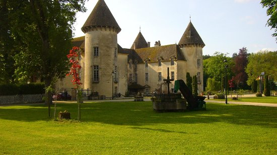 the castle of this kingdom picture of chateau de savigny les beaune savigny les beaune. Black Bedroom Furniture Sets. Home Design Ideas