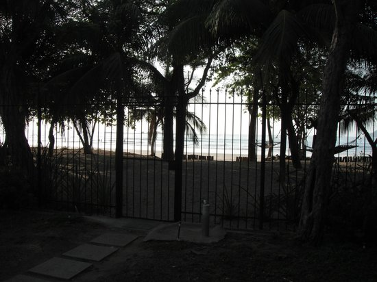 Casa Cook: Beach view from condo