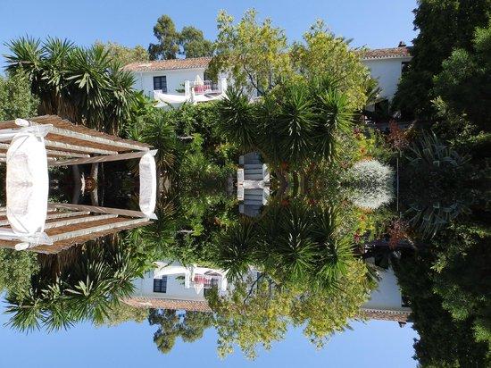 Hotel Finca el Cerrillo : Reflecting on happy times!