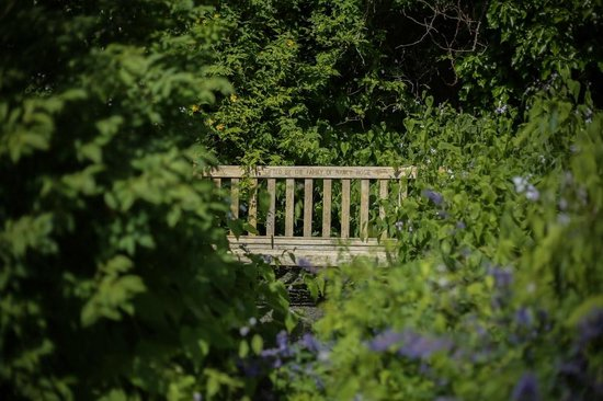 Malleny Garden: Hidden bench