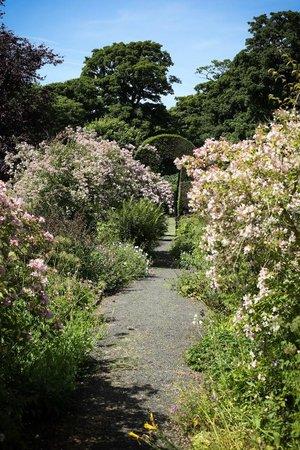 Malleny Garden: Flower-lined path