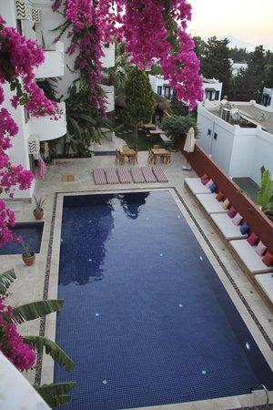La Brezza Suite & Hotel: Beautiful pool area...