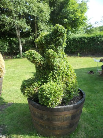 Number27Harrogate: Topiary of a bear