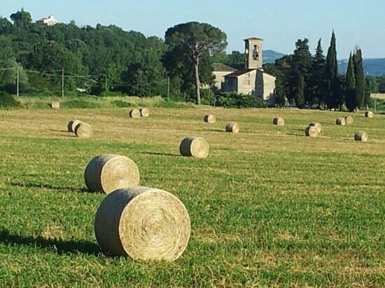 Il Moro Country House : Veduta...
