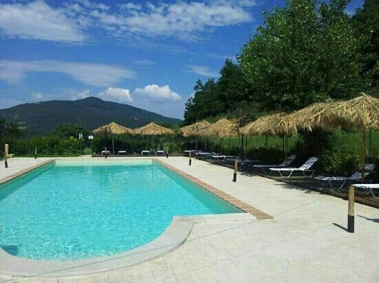 Il Moro Country House: La piscina circondata dal verde...