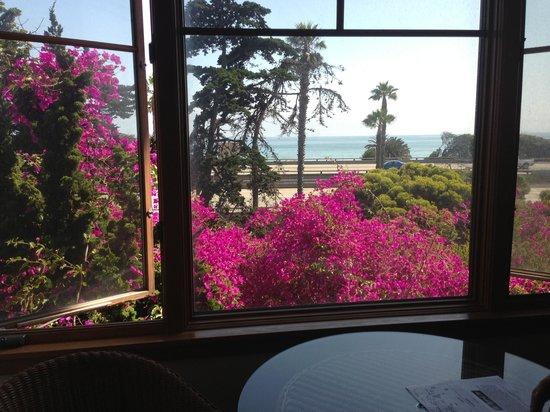 Wyndham Garden Ventura Pierpont Inn : The view