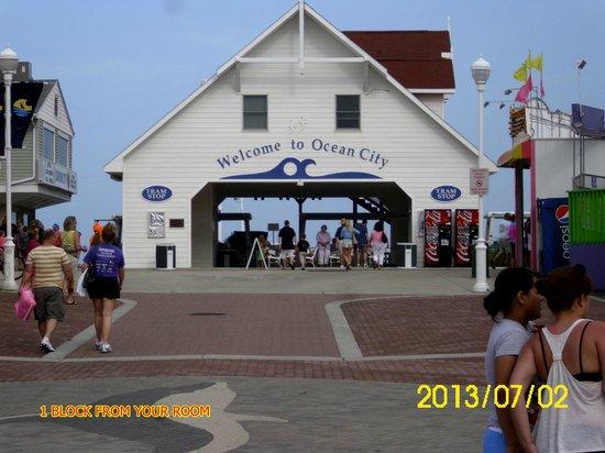 Oceanic Motel照片