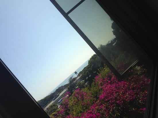 Wyndham Garden Ventura Pierpont Inn: View