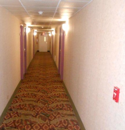 Best Western Plus Poconos Hotel : Ramada Tannersville PA