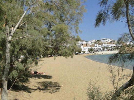 Corali Hotel: Logaras Beach