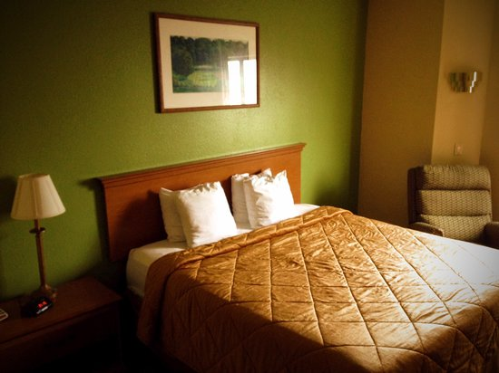 Econo Lodge Inn & Suites : Guest Bedroom (King Bed)