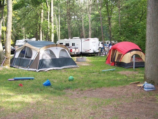 Albert E. Sleeper State Park: Site 37