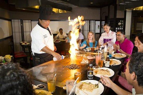 Japanese Hibachi Restaurants In Orlando Fl