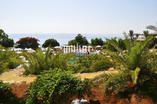 Dead Sea Marriott Resort & Spa: Plenty of greenery