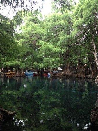 Lake Camecuaro: amazing! camecuaro