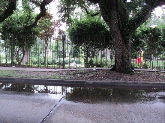 Oakview Bed and Breakfast: City Park Sculptural Garden