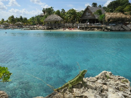 View from our room picture of lions dive beach resort - Lions dive hotel curacao ...