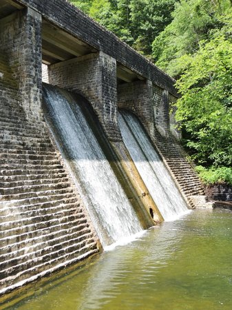 Standing Stone State Park: dam