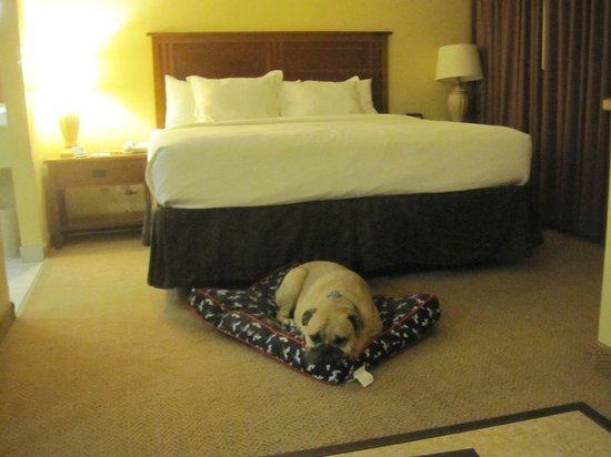 MCM Elegante Lodge & Resort : Comfy sleeping area with LOTS of leg room