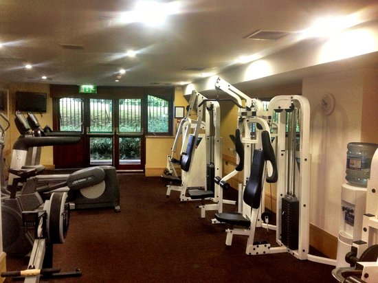 Radisson Blu St. Helen's Hotel, Dublin: The Gym