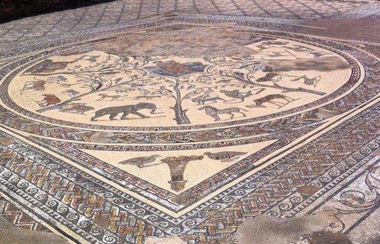 โวลูบิลิส: a restored mosaic floor