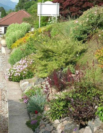 Seafield House Bed & Breakfast: Entrance garden