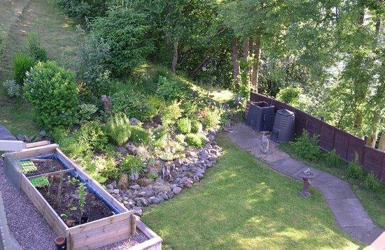 Seafield House Bed & Breakfast: Side garden