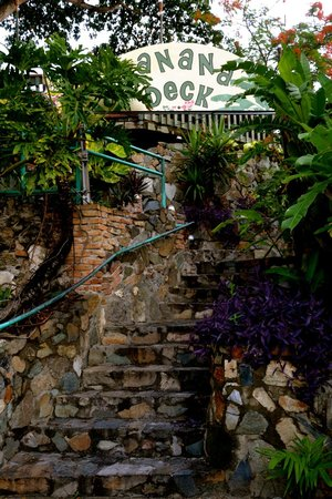 The Banana Deck : Stairs up to the restaurant