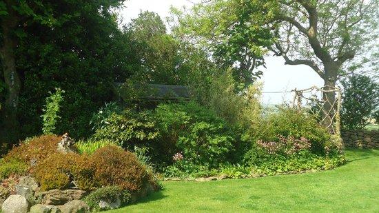 Scorrier, UK: More of the gardens