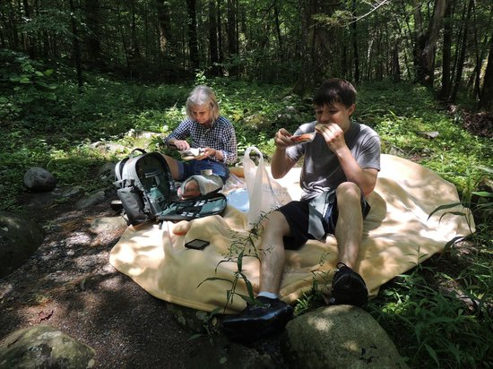 Upper Tremont Road in Great Smoky Mountains National Park : picnic along the banks