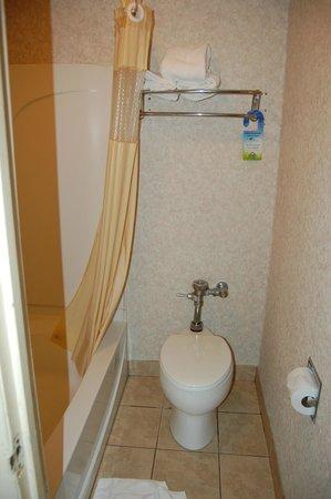 Travelodge Ridgeway Martinsville Area : Bathroom