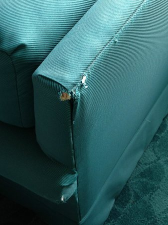 Moody Gardens Hotel Spa & Convention Center: Damaged Chair