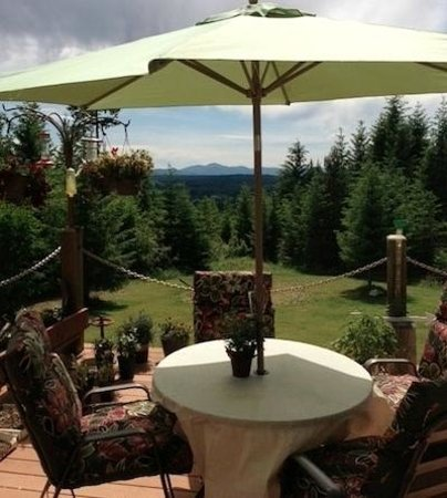 Careywood, ID: View from Patio